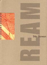 Sian Bowen Rebus web