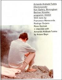 Armando Andrade Tudela: Efectiviwonder cover image