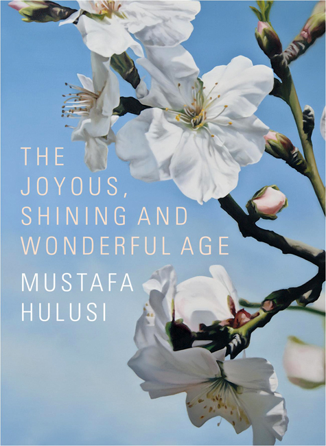 Mustafa Hulusi cover image