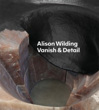 Alison Wilding Vanish & Detail